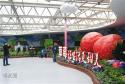 第六届北京农业嘉年华在昌平兴寿草莓博览园开幕,参展企业数量达历史之最