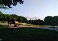 北小河公园的清晨
