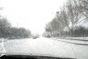 飞雪迎春访长城,千树万树梨花开。