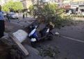 痛心!昨天一天北京大风已致4人遇难