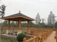 天南·提升景观品质 建设宜居环境