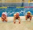 热烈欢迎花样游泳美女衣晓晨成为伽纳体育水上项目培训师