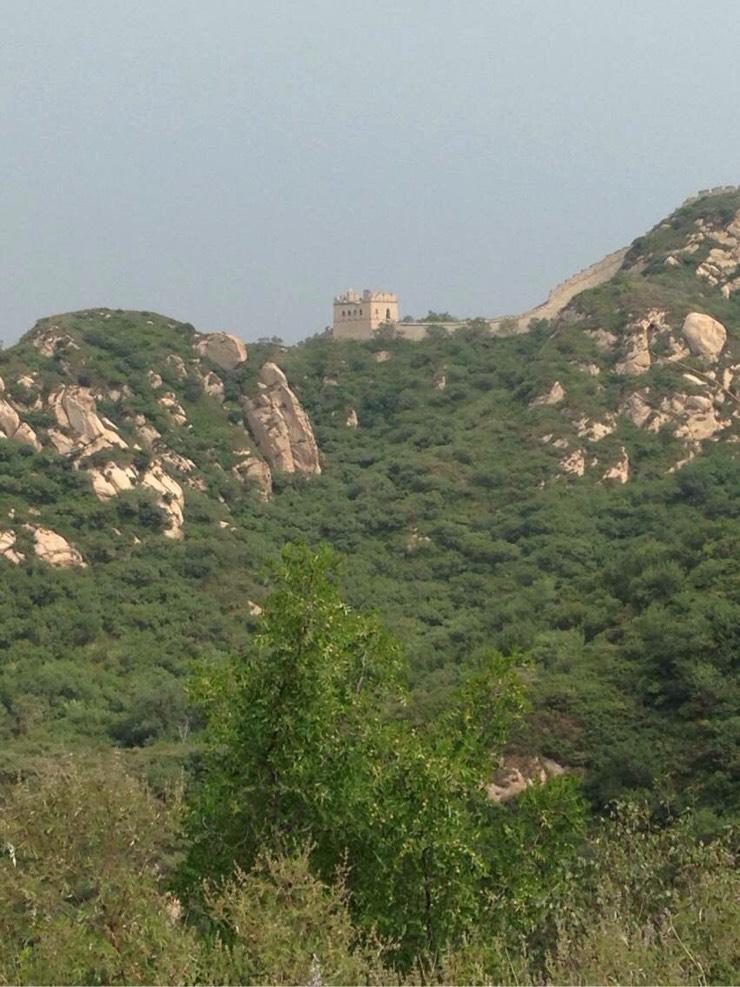 玩转北京大兴野生动物园与八达岭野生动物园